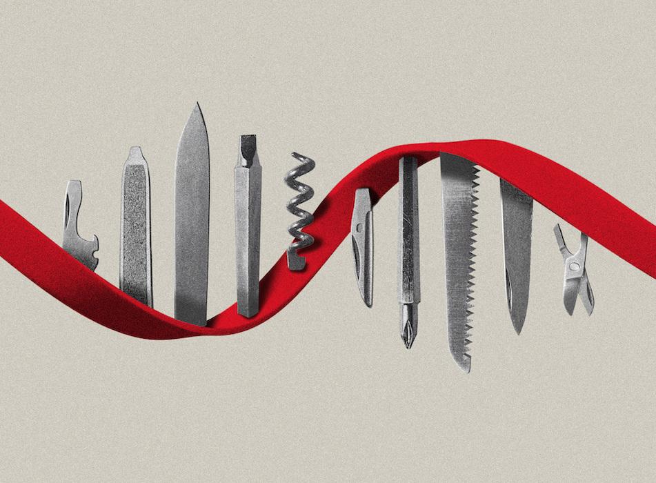 Das Potenzial für mRNA geht über Impfstoffe hinaus